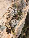 Ova hrpa stine godinama visi tik iznad glava penjača i šetaća...točnije, visila je...